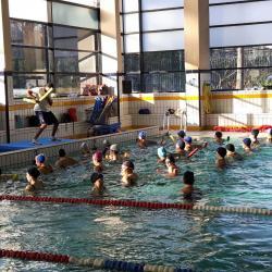 Les Colombes de Bercy, un club familial d'activités aquatiques